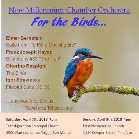 """New Millennium Chamber Orchestra """"For the Birds"""" concert April 2018"""